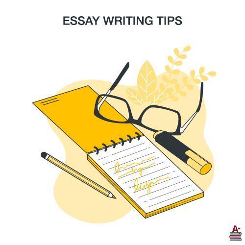 写essay的技巧